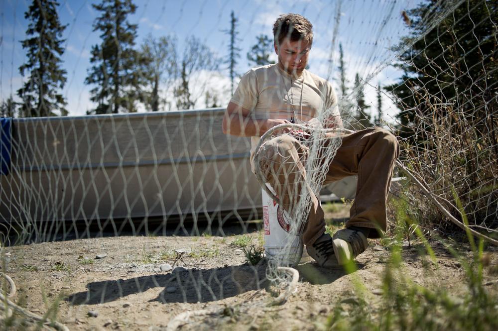 United states fish camp david mattox for Fish camp hilton head