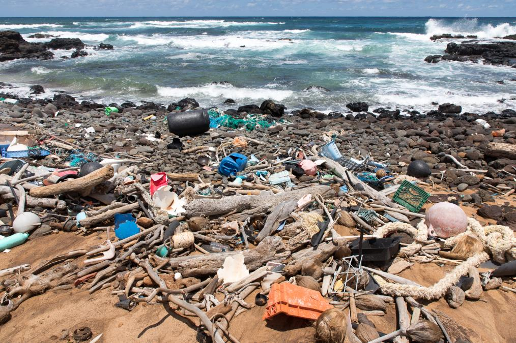 Washed Ashore: Hawaiian Islands